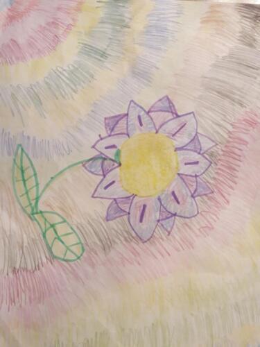 flower pic 1